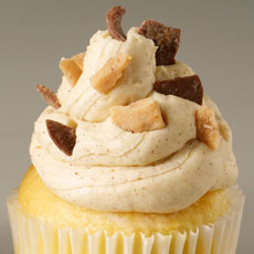 CUP9 - Snickerdoodle Toffee Cupcake